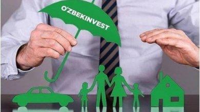Photo of Интернет-страхование в Ташкенте: новые возможности на insurance.uz