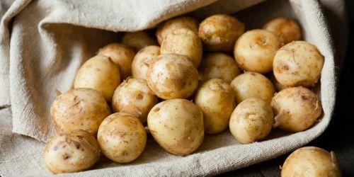 Photo of Производители хотят продавать картошку класса «эконом»