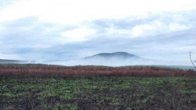 Photo of В якутском парке открыли вакансию для отшельников