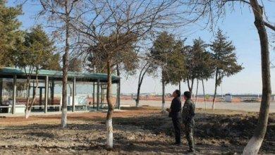 Photo of В Сергелийском районе столицы незаконно вырубили 15 деревьев