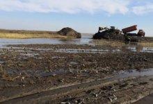 Photo of 100 килограммов рыбы погибло на озере в Костанайской области