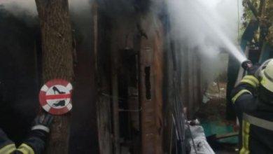 Photo of В столичном Гидропарке произошел пожар: есть погибший